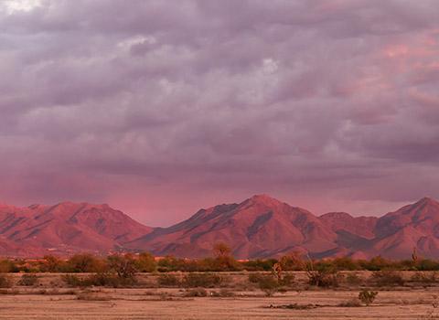 Sonoran Hills