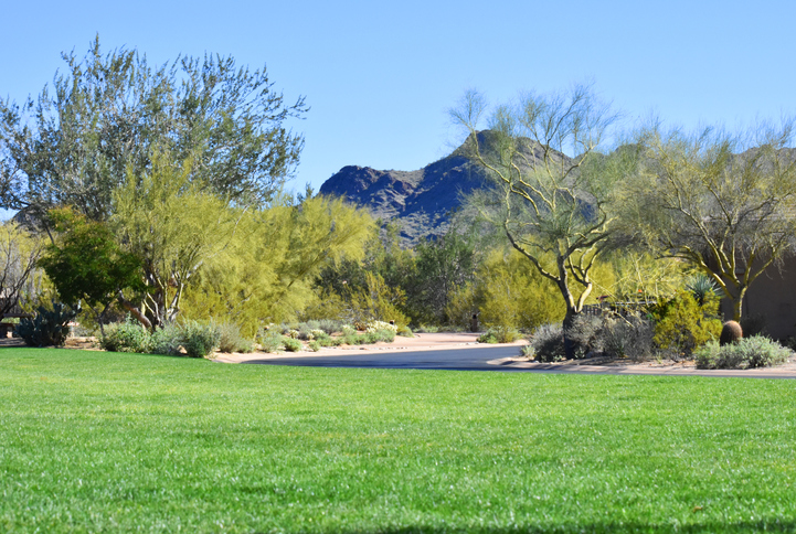 Choosing the Perfect Golf Course Community