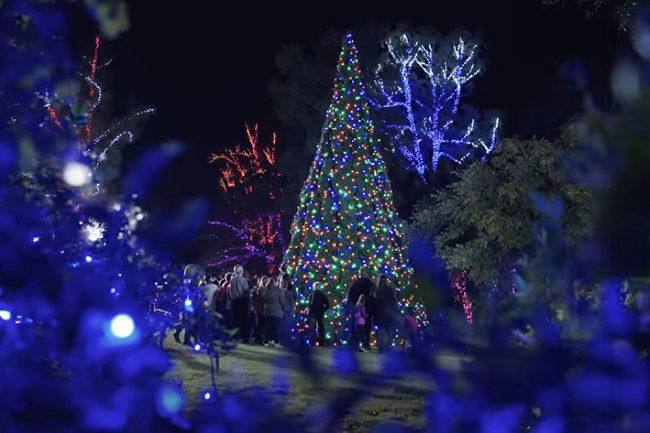ZooLights Is Here! Dont Miss It!